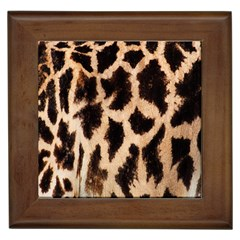 Yellow And Brown Spots On Giraffe Skin Texture Framed Tiles