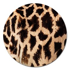 Yellow And Brown Spots On Giraffe Skin Texture Magnet 5  (round)