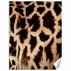 Yellow And Brown Spots On Giraffe Skin Texture Canvas 18  x 24