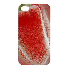 Red Pepper And Bubbles Apple Iphone 4/4s Hardshell Case
