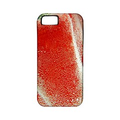 Red Pepper And Bubbles Apple Iphone 5 Classic Hardshell Case (pc+silicone)