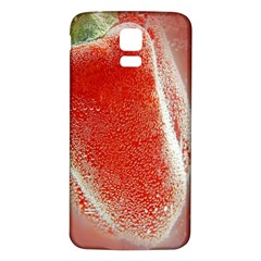 Red Pepper And Bubbles Samsung Galaxy S5 Back Case (white)