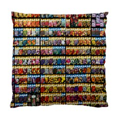 Flower Seeds For Sale At Garden Center Pattern Standard Cushion Case (two Sides)