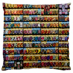 Flower Seeds For Sale At Garden Center Pattern Large Flano Cushion Case (one Side)
