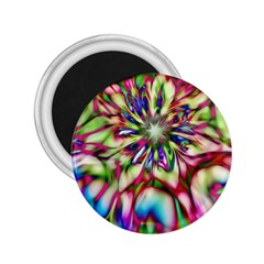 Magic Fractal Flower Multicolored 2.25  Magnets