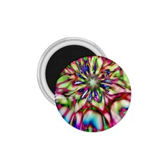 Magic Fractal Flower Multicolored 1.75  Magnets