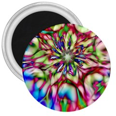 Magic Fractal Flower Multicolored 3  Magnets