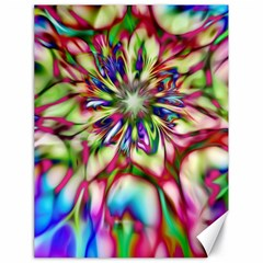 Magic Fractal Flower Multicolored Canvas 18  x 24