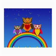 Owls Rainbow Animals Birds Nature Small Glasses Cloth