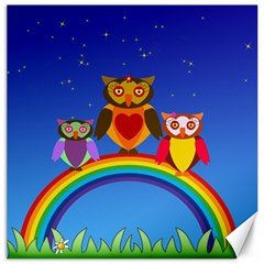 Owls Rainbow Animals Birds Nature Canvas 20  x 20