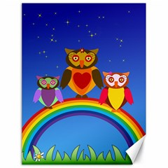 Owls Rainbow Animals Birds Nature Canvas 18  X 24