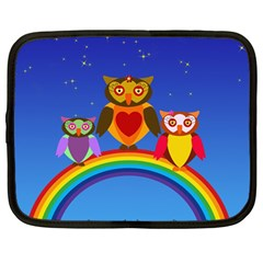 Owls Rainbow Animals Birds Nature Netbook Case (large)