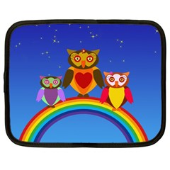 Owls Rainbow Animals Birds Nature Netbook Case (xxl)
