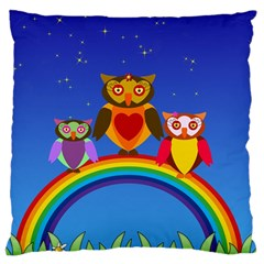 Owls Rainbow Animals Birds Nature Large Cushion Case (one Side)