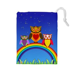 Owls Rainbow Animals Birds Nature Drawstring Pouches (large)