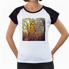 Summer Sun Set Fractal Forest Background Women s Cap Sleeve T