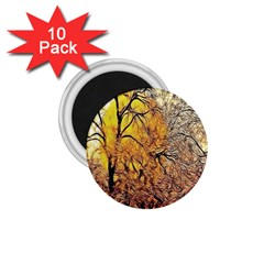 Summer Sun Set Fractal Forest Background 1 75  Magnets (10 Pack)