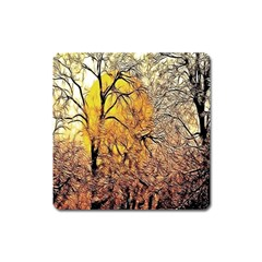 Summer Sun Set Fractal Forest Background Square Magnet