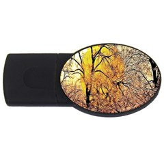 Summer Sun Set Fractal Forest Background Usb Flash Drive Oval (4 Gb)
