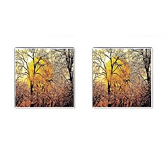 Summer Sun Set Fractal Forest Background Cufflinks (square)