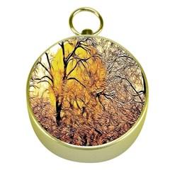 Summer Sun Set Fractal Forest Background Gold Compasses