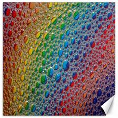 Bubbles Rainbow Colourful Colors Canvas 12  X 12