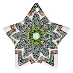 Decorative Ornamental Design Ornament (star)