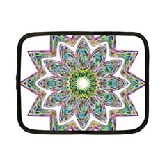 Decorative Ornamental Design Netbook Case (small)