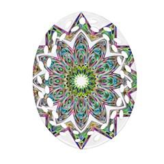 Decorative Ornamental Design Oval Filigree Ornament (two Sides)