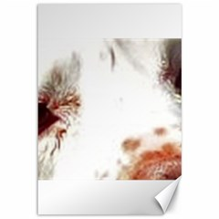 Clumber Spaniel Eyes Canvas 12  x 18