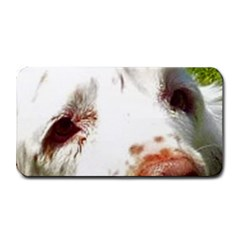 Clumber Spaniel Eyes Medium Bar Mats