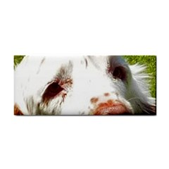 Clumber Spaniel Eyes Cosmetic Storage Cases