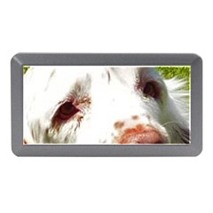 Clumber Spaniel Eyes Memory Card Reader (Mini)