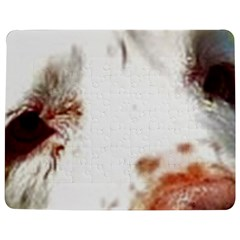 Clumber Spaniel Eyes Jigsaw Puzzle Photo Stand (Rectangular)