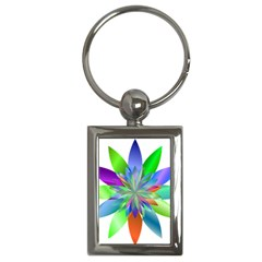 Chromatic Flower Variation Star Rainbow Key Chains (rectangle)