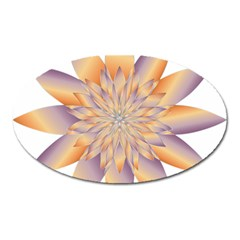 Chromatic Flower Gold Star Floral Oval Magnet