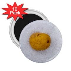 Hintergrund Salzkartoffel 2 25  Magnets (10 Pack)