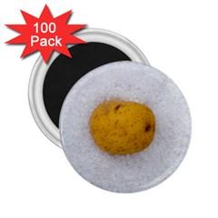 Hintergrund Salzkartoffel 2 25  Magnets (100 Pack)
