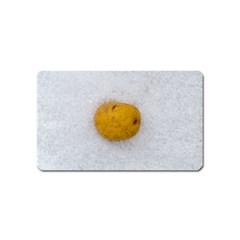 Hintergrund Salzkartoffel Magnet (name Card)