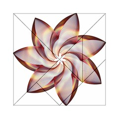 Prismatic Flower Line Gold Star Floral Acrylic Tangram Puzzle (6  X 6 )