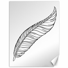 Feather Line Art Canvas 36  X 48