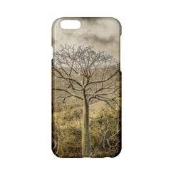Ceiba Tree At Dry Forest Guayas District   Ecuador Apple Iphone 6/6s Hardshell Case