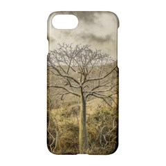 Ceiba Tree At Dry Forest Guayas District   Ecuador Apple Iphone 7 Hardshell Case