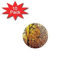 Summer Sun Set Fractal Forest Background 1  Mini Magnet (10 Pack)