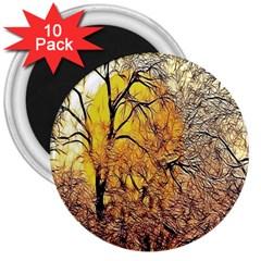 Summer Sun Set Fractal Forest Background 3  Magnets (10 Pack)