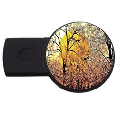 Summer Sun Set Fractal Forest Background USB Flash Drive Round (4 GB)