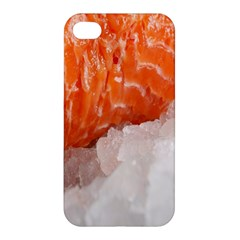Abstract Angel Bass Beach Chef Apple iPhone 4/4S Hardshell Case
