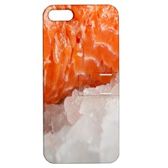 Abstract Angel Bass Beach Chef Apple iPhone 5 Hardshell Case with Stand