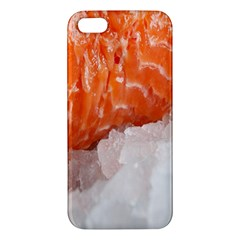 Abstract Angel Bass Beach Chef Apple iPhone 5 Premium Hardshell Case