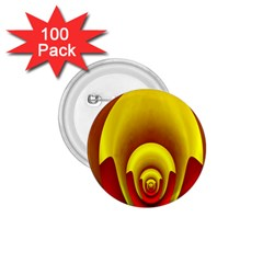 Red Gold Fractal Hypocycloid 1 75  Buttons (100 Pack)